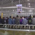 White House Finally Admits Flights of Illegal Immigrant Children Were Privately Sent to NY